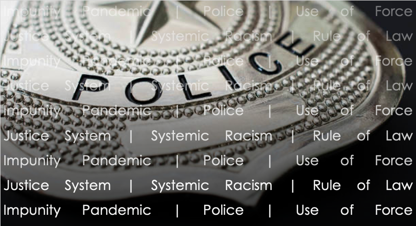 the impunity pandemic police use of force the justice system and systemic racism an examination of inequality discrimination and declining trust in societal institutions and the rule of law sigurdson post